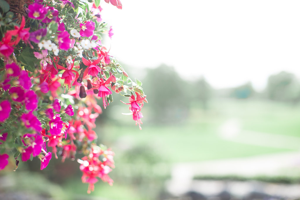 richmond-flowers-quilchena-golf